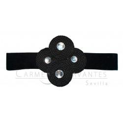 Cinturón Cisne